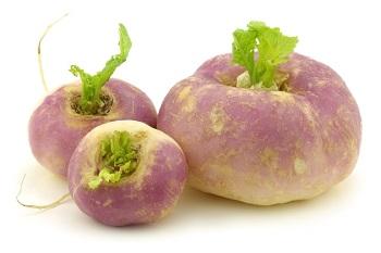 Противопоказания к употреблению брюквы и действие овоща на организм