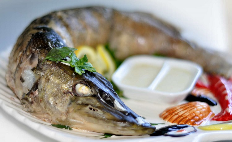 Рецепты приготовления вкуснейших блюд из рыбы белый амур