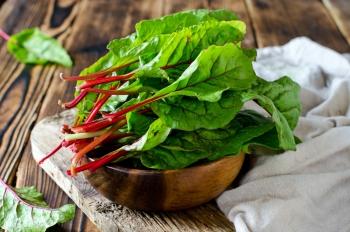 Мангольд: польза и вред, полезные свойства для здоровья