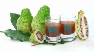 Фрукт и сок нони: полезные свойства, противопоказания, сферы применения