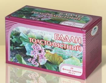 Бадан: лечебные свойства и противопоказания, химический состав