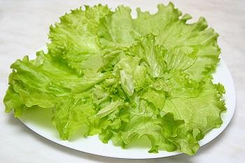 Чем полезен листовой салат, полезные свойства овоща для организма