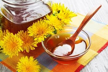 Чем полезен мед из одуванчиков, и его полезные свойства для организма