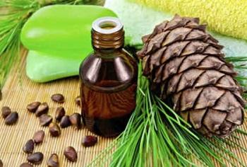 Чем полезно кедровое масло, в том числе для организма мужчин и женщин