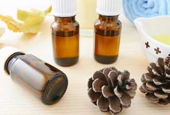 Лечебные свойства и применение кедрового масла в народной медицине