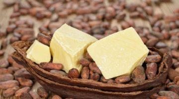 Полезные свойства и способы применения масла какао - ценного продукта