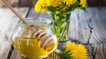 Польза и вред меда из одуванчиков для здоровья человека - основные моменты