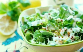 Спорыш или горец птичий: полезные свойства и противопоказания, применение в кулинарии