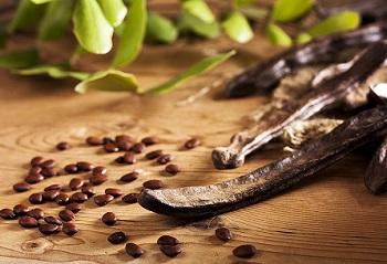 Правила выбора качественных продуктов - кэроб и его полезные свойства