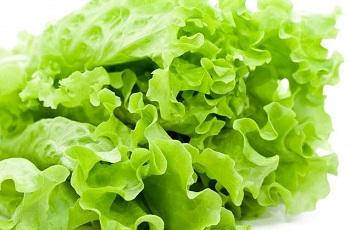 Правила выбора качественных продуктов - листовой салат и его полезные свойства