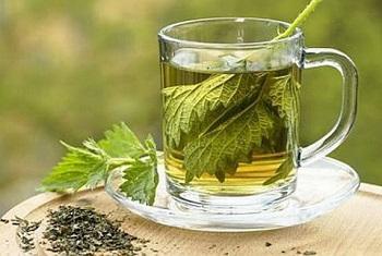 Рекомендации по употреблению крапивы и химический состав растения