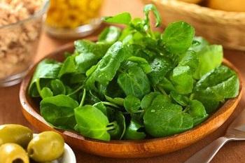 Рекомендации по употреблению кресс-салата и химический состав листьев