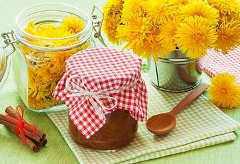 Рецепт приготовления меда из одуванчиков и несколько советов