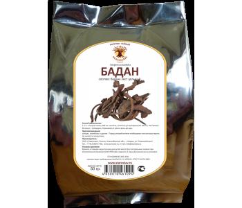 Бадан: лечебные свойства и противопоказания, использование листьев и корневищ растения