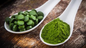 Хлорелла полезные свойства и противопоказания