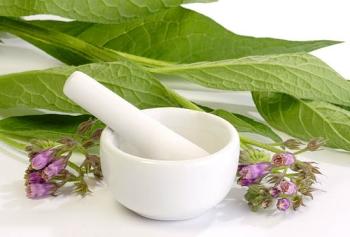 Окопник лекарственный: полезные свойства и противопоказания, применение в косметологии