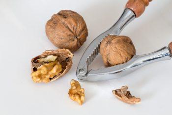 Правила выбора перепонок грецкого ореха