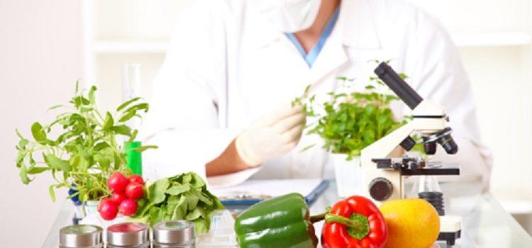 Что такое палео-диета и при каких заболеваниях она назначается