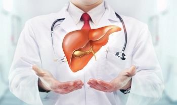 Рекомендации врачей на время соблюдени диеты при гепатите печени